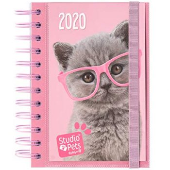Agendas y calendarios de gatos