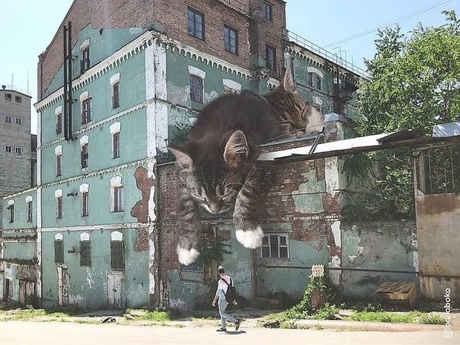 Gato gigante techo edificio